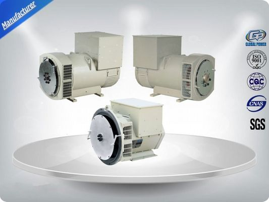 چین Three Phase Brushless AC Generator تامین کننده