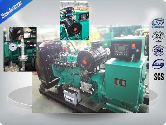 چین 10KW to 200KW Natural Gas Generator / Gas Powered Generators تامین کننده